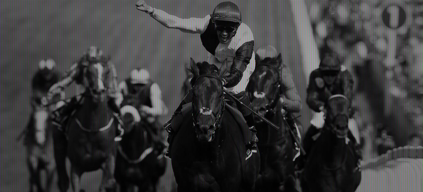 Newmarket racecourse racing image